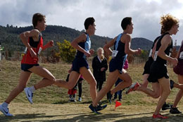 Cross Country at Sydney High 6