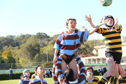 Rugby at Sydney High 5