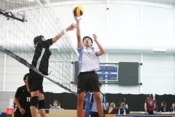 Volleyball at Sydney High